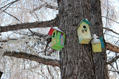Huizen voor vogels in het de winterpark stock afbeelding