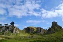 Huke nedgångar - Taupo Arkivbilder