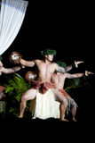 Hula舞蹈家 库存照片