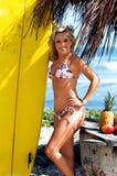 hula девушки Стоковые Фотографии RF