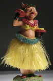 hula猪 库存图片