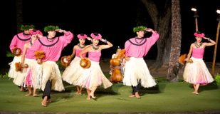 Hula dancers Royalty Free Stock Photos