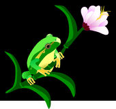 Hula frog on a flower Stock Image