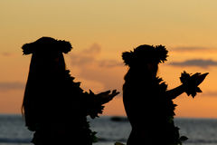 Hula havaiano Fotografia de Stock Royalty Free