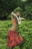 Hula hawaiano Imagenes de archivo