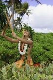 Hula hawaiano Fotografía de archivo