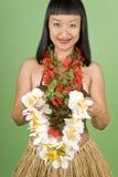 hula hawaiian девушки стоковые изображения