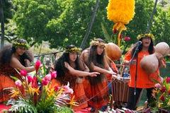 Hula in the rain. Event:  2011 King Kamehameha Birthday Celebration Stock Images