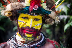 Huli Wigmen в Tari Стоковые Фотографии RF