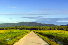 Hulin City, Heilongjiang Province, the Ussuri River Farm Road Stock Image