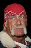 Hulk Hogan royaltyfri foto
