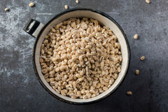 Hulled barley. A cup of hulled barley Stock Photography