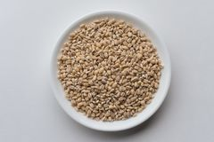 Hulled Barley in a white bowl. Top down view of dried hulled barley in a white bowl Stock Photo