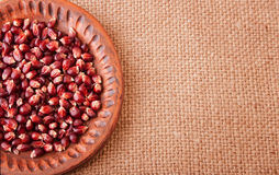 Hulled Corn Seeds on Burlap Background Stock Image