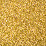 Hulled Millet. A multitude seeds of Hulled Millet Royalty Free Stock Photos
