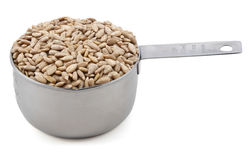 Hulled sunflower seeds in a cup measure Stock Photography