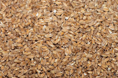 Hulled wheat on sale at Market Stock Photo
