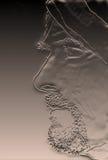Hulpprofiel van de gebaarde mens met tulband Stock Afbeeldingen