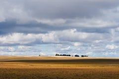 Hulun Buir grassland Stock Photography