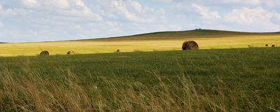 Hulun Buir Grassland Royalty Free Stock Photography