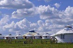 Hulunbuir betar land Arkivfoto