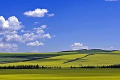 Hulunbuir Pasture Land Royalty Free Stock Photography