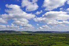 Hulunbuir Pasture Land Royalty Free Stock Photo