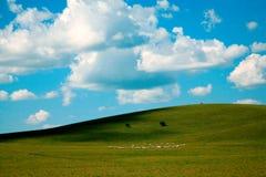 Hulunbuir pasture land. The hulunbuir prairie spring in China Stock Image