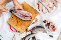 Humain ceignant d'un bandeau un poisson frais Photographie stock libre de droits