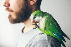 Humain a le perroquet domestiqué de Quaker photos stock