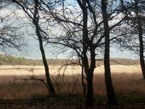 Humains loin loin, Ede, Pays-Bas photo libre de droits