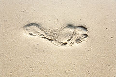 Human adult footprint in the fine sand Royalty Free Stock Image