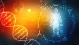 Human Anatomy with Dna Structure in medical background. Chromosome Man, Medical technology background royalty free illustration
