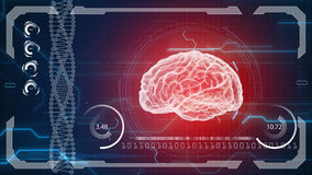 Human anatomy. Human brain. HUD background. Medical concept anatomical future Royalty Free Stock Photography