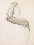 Human arm study, pencil sketch Royalty Free Stock Photo