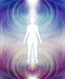 Human Aura Energy Field. White female silhouette with a blue upper and deep purple lower energy field aura radiating outwards stock illustration