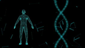 Human Avatar on Virtual 3D Holographic Projection with Futuristic Blue DNA . Male x-ray scan
