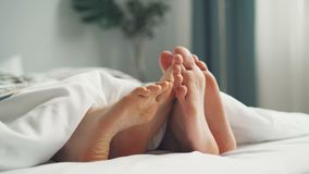 Human bare feet touching each other in bed under white blanket in bedroom. Human bare feet male and female are touching each other in bed under white blanket on stock video