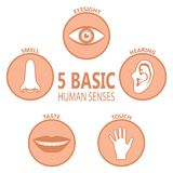 Human basic senses. Poster five basic human feelings. Set icons the five senses of human perception. Eyesight, hearing, smell, taste, touch. Vector illustration vector illustration