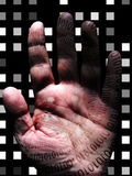 Human Binary Hand Royalty Free Stock Photography