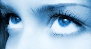 Human blue eye. Royalty Free Stock Images