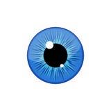 Human blue eyeball iris pupil isolated on white background. Eye Stock Photo