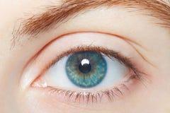 Human, blue healthy eye macro Stock Images