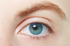 Human, blue healthy eye macro Stock Photo