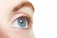 Human, blue healthy eye macro Royalty Free Stock Photo
