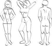 Human body. Vector illustration for basic sketch art line for human body Royalty Free Stock Photos