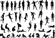 Human Body. Collection of human body vector silhouettes Royalty Free Stock Photos