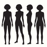 Human body anatomy. Front, back, side view, vector woman illustration vector illustration