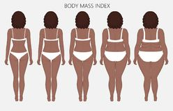 Human body anatomy_Body mass Index of African women from lack of. Vector illustration body mass Index African American woman from lack of weight to obesity. Back stock illustration