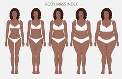 Human body anatomy_Body mass Index of African women from lack of. Vector illustration body mass Index African American woman from lack of weight to obesity Front royalty free illustration